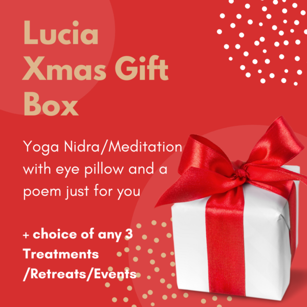 lucia guerin sheehan xmas gifts